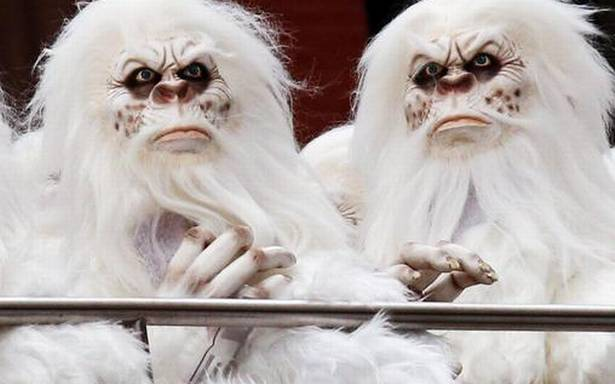 Is Yeti a real animal? | Top Indi News